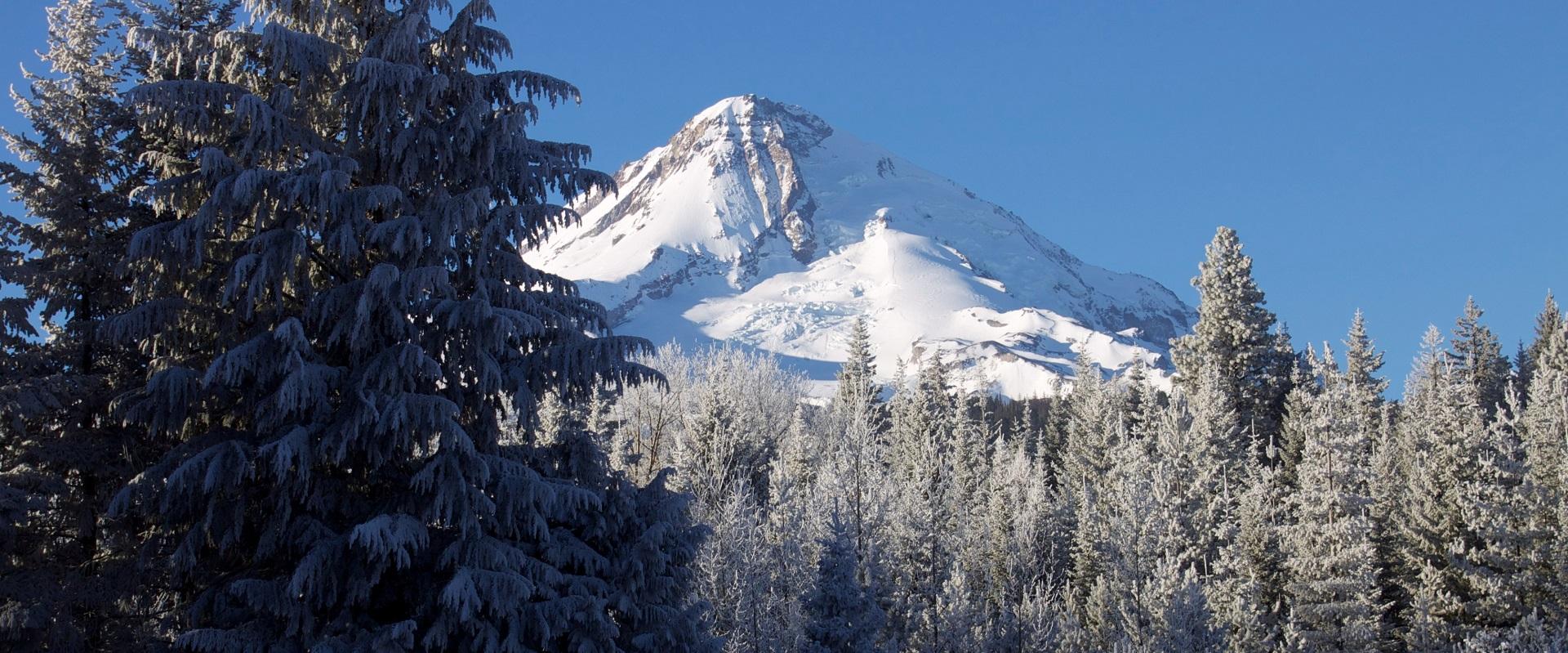 Mt. hood Outdoors